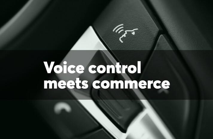 slide-100417-voice