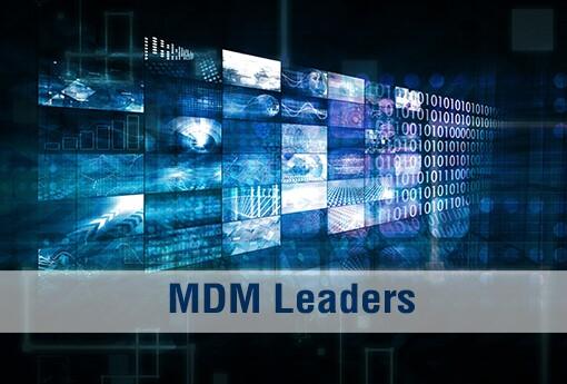 MDM-Leaders_intro slide.jpg
