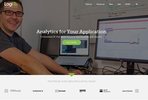 Logi-Analytics 20.jpg