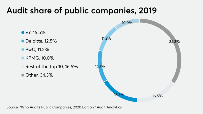 AT-06420- who audits public companies 2019