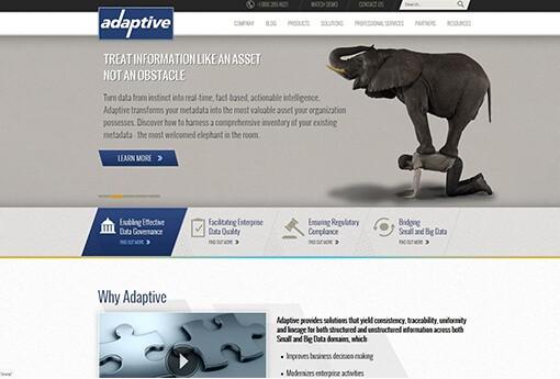Adaptive.jpg
