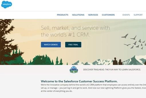 Salesforce 20.jpg