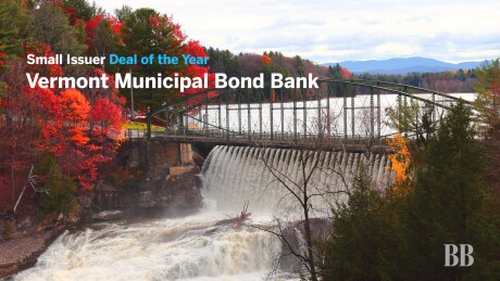 Thumbnail for Video: Deal of the Year 2019 — Small Issuer: Vermont Municipal Bond Bank