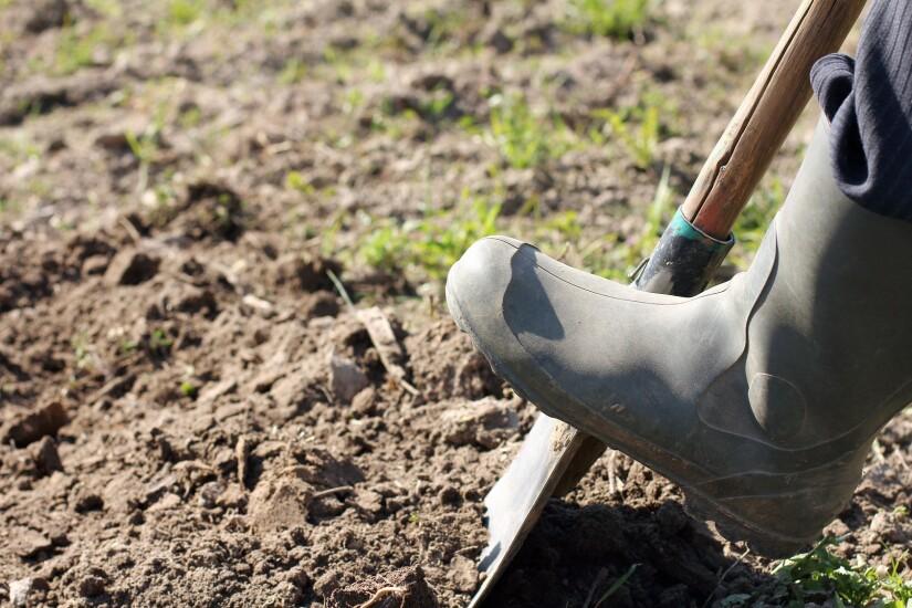Digging.Fotolia.jpg