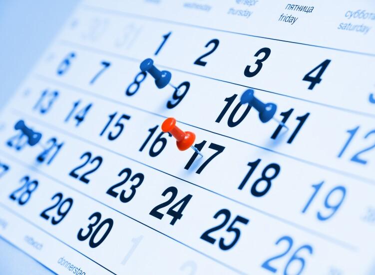 Calendar_Pins