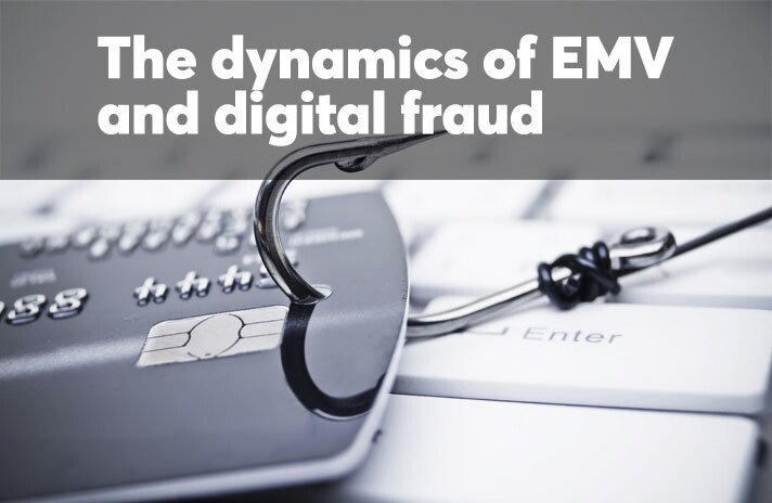 The dynamics of EMV and digital fraud
