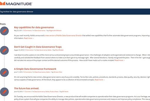Magnitude-Data-Governance-Director.jpg