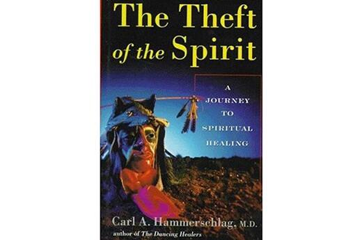 The-Theft-of-the-Spiritby-Carl-Hammerschlag.jpg