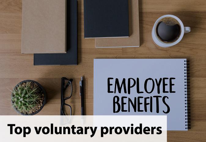 VoluntaryProviders.png