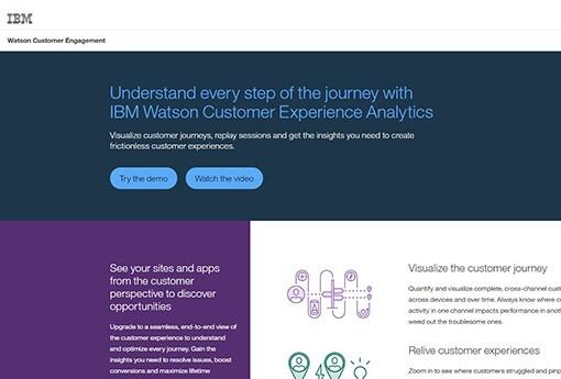 IBM DI.jpg