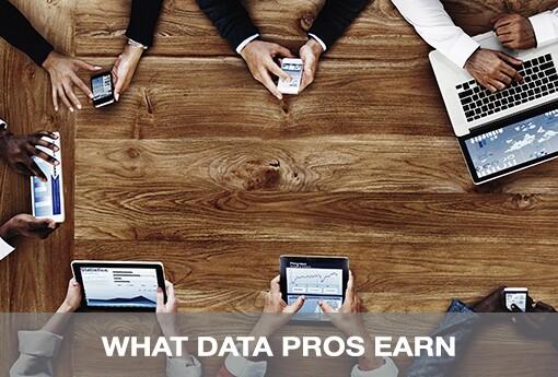 WHAT-DATA-PROS-EARN.jpg