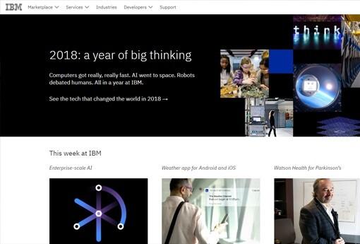 IBM 14.jpg