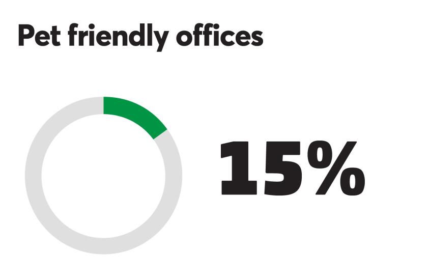 BTN_0918_Pet friendly 15%.png