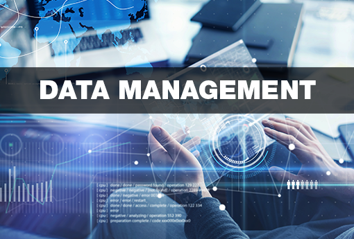 DATA-MANAGEMENT-2.png