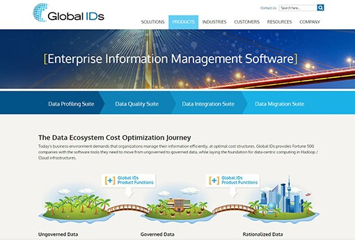 Global-IDs---Enterprise-Information-Management-Software.jpg