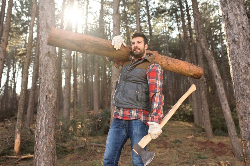 Logger.jpg