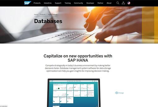SAP 40.jpg